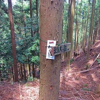 加太向井登山口から福徳へ… 錫杖ヶ岳