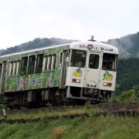 土佐くろしお鉄道の列車を撮影~窪川等にて_17/05/13.14