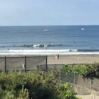 今日の波は、どうだろな。5月28人