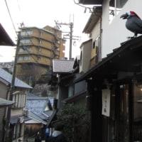 六甲山全山縦走路歩きⅣ 記念碑台から一軒茶屋