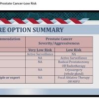 限局性前立腺癌の部分治療(Focal therapy)、超音波治療について2017