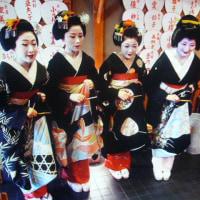 豪華絢爛、京都五花街合同公演!!