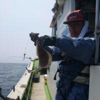 カレイ釣り出船中