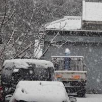 また、雪かい・・・