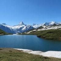 Ni mangxis (8: en Grindelwald)