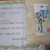 9/? 渡辺米穀 LINE登録お礼