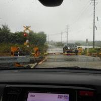 梅雨らしい天気