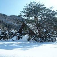 Gifu / Shirakawa Trip ( 4 )