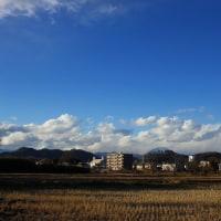 鹿沼市 上殿町と黒川沿いを散歩 29.1.13