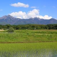 田植えの頃の八ヶ岳