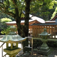 岐阜県② 十五社神社-2