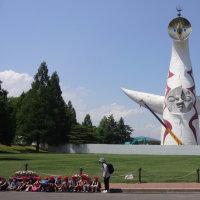 万博記念公園のルピナスの花。