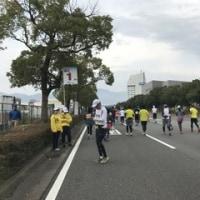 神戸マラソン何とか、完走♪