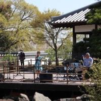 池田城跡公園でコンサートでした!