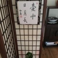 茶花 その1
