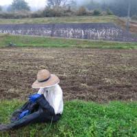 田起こし終えました。