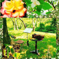 オカリナのある風景🎵「若葉」の歌