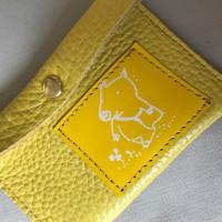 Yellow pass case