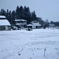 17-01-14 厳寒期