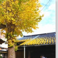 「晩秋の北陸路・その3-金沢」