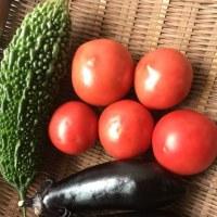 産直野菜〜