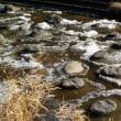 幻か!?大寒までの冬の風物詩 久慈川の流れ