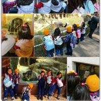 三つ子2組で王子動物園へ