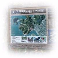 下田公園★あじさい祭り~♪♪♪