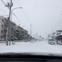 今年の初出張初は猛吹雪