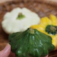 福岡の料理&お片づけ教室「ベジフルキッチン」より:夏の珍客はまるでUFO