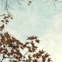秋の日の思い出