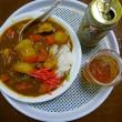 今日の夕食はカレーライス(つ´∀`)マァマァの出来 マリリンも食べました(´∀`*)