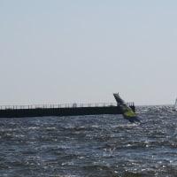 今日は検見川最高の風でした。