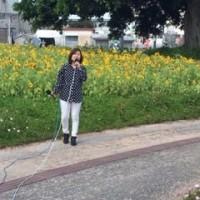 名護アンテオケ教会のクロスロードがひまわり畑で路上ライブを行いました