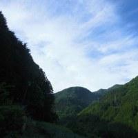 平成29年5月26日・今朝の東祖谷9.9℃