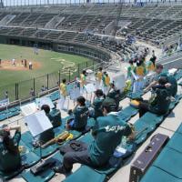 都市対抗野球宮城県大会結果
