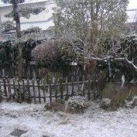 2009年1月1日朝の雪