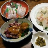 3月19日(日)鯛と菜の花の棒寿司
