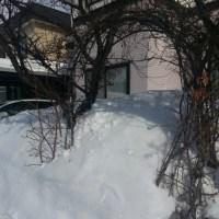 パートナー排雪