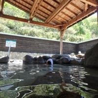 連日の温泉