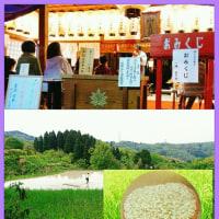 オカリナのある風景🎵「淺野神社の春祭り」(5.12最終日)