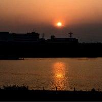 30/Mar 朝焼けの富士と染井吉野とアオジと夕暮れのダイヤモンド富士