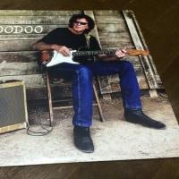 TONY JOE WHITE / HOODOO