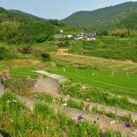 稲積癒しの里山