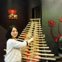 🌟ベトナム伝統楽器『ダンバオ』&竹から出来た楽器『トルン』生演奏
