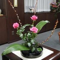 市長室の花(12月5日)
