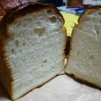 今日は、かわきーが・・パンのトラ