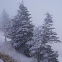 志賀草津道路・雪の回廊と温泉巡り