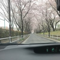 ペーパードライバーにおすすめの車          フジドライビングスクール東京
