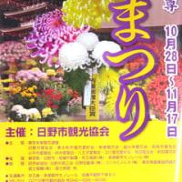 2016 第45回菊まつり
